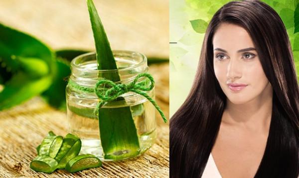 Beneficios del Aloe Vera para tu cabello