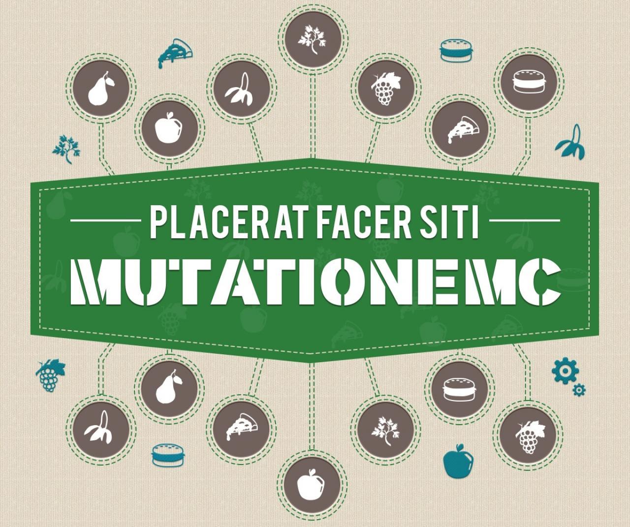 Imagen de Diseño de Infografía por Movidagrafica