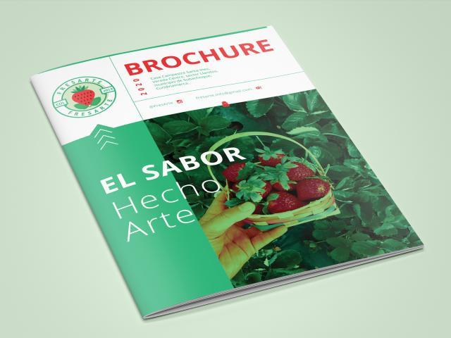 Brochures, Portafolios, Revistas y Libros